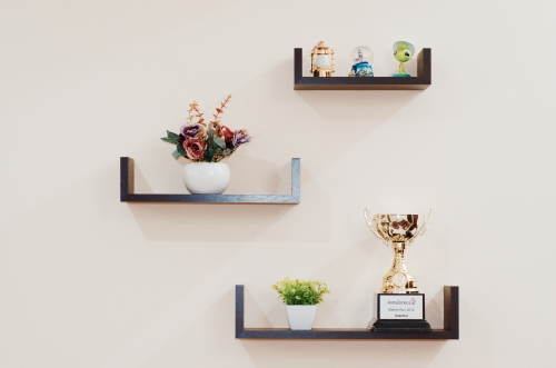 plant-prize-shelves-74942.jpeg